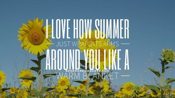 Summer Feels Quotes