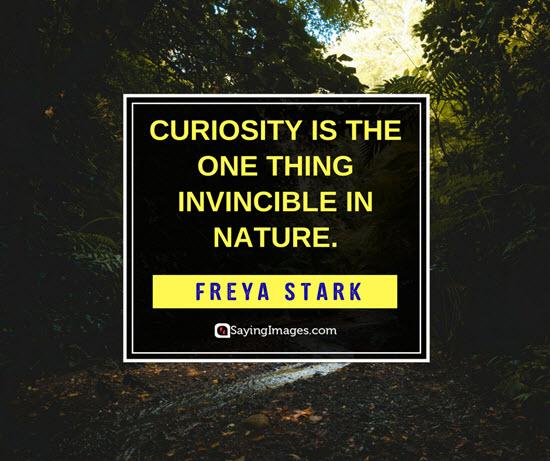 freya stark curiosity quotes