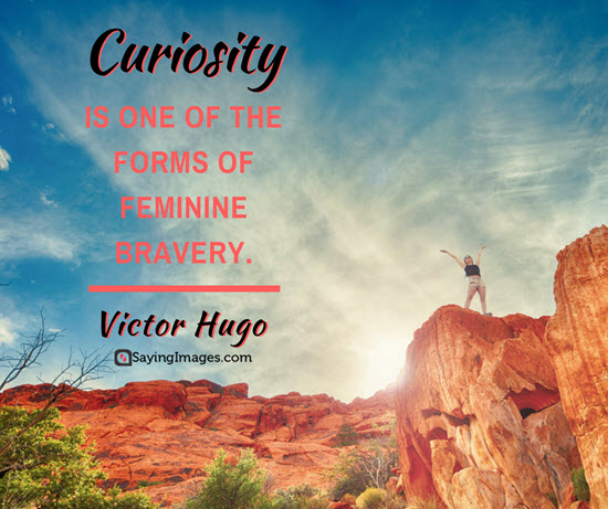 victor hugo curiosity quotes