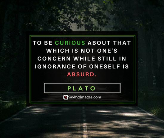 plato curiosity quotes