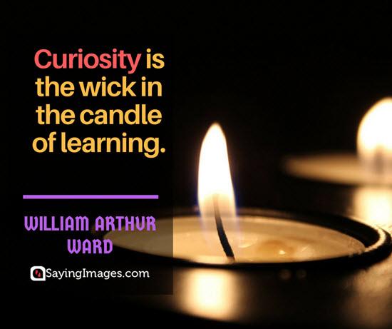 william arthur ward curiosity quotes