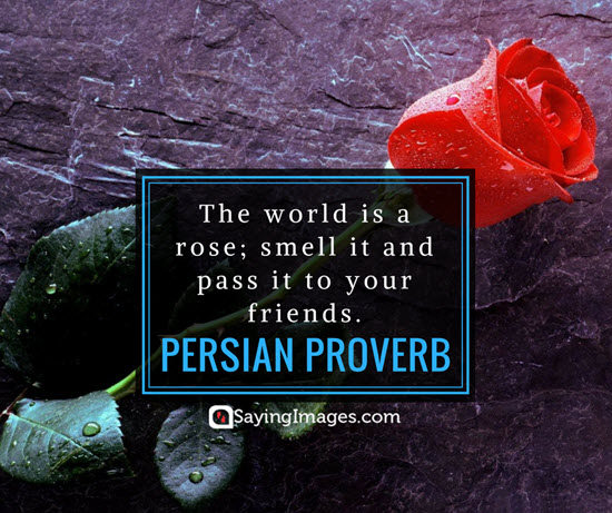 roses persian proverb quotes